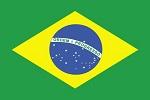 icone brasil